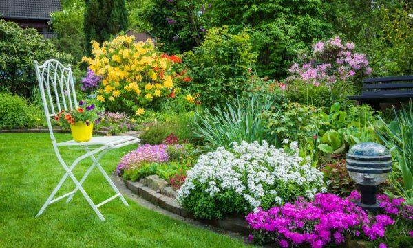 Ghid practic pentru design de grădină