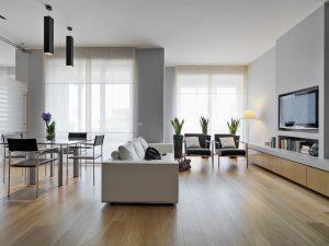 living modern open space